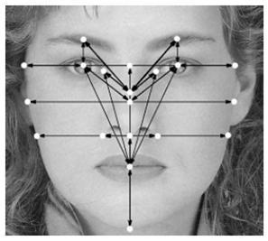 گروه توسعه - دانلود پایان نامه تشخیص چهره, دانلود پایان نامه تشخیص چهره با ویژگی های بیومتریک, دانلود پایان نامه تشخیص چهره, دانلود پایان نامه تشخیص چهره بیومتریک